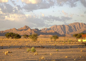 The Harnas Wildlife Sanctuary in Namibia