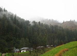 Shringi Village