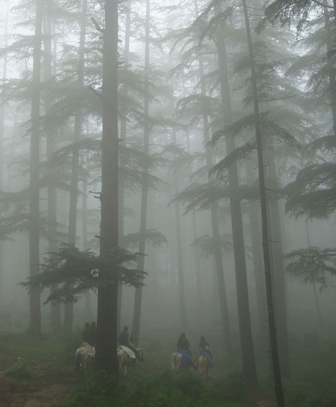 Riders in the mist in Naldehra, a village in Himachal Pradesh, India