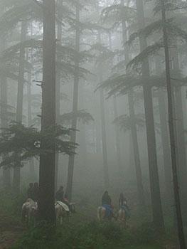 Riders in the mist in Naldehra in Himachal Pradesh, India