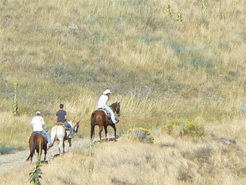 An early morning ride across the canyon at Chico. photo by Max Hartshorne.