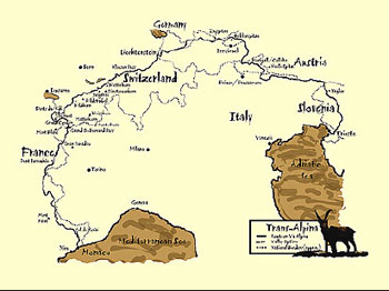 The Via Alpina route through 8 countries in the Alps.