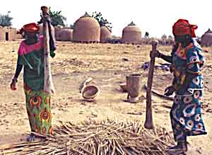 Women in Niger pounding millet - photos by Alexis Wolff