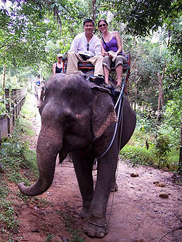 Riding an elephant in Ko Samui, Thailand