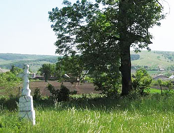 An old village cemetery near Ternopil