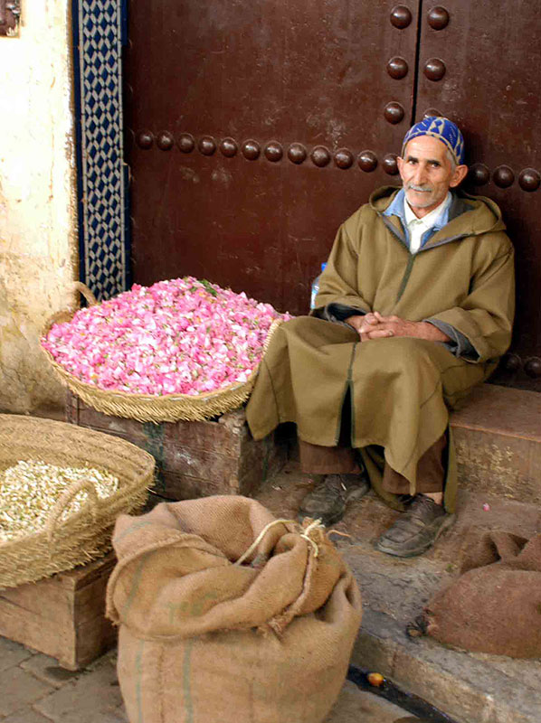 The souk in Fez. Photo by Janis Turk.