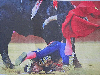 Cayetano falls hard to the ground after being gored by a bull.