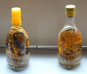 Sankes are soaked in rice wine for nine months to make snake wine, and the Vietnamese throw in a scorpion for good measure.