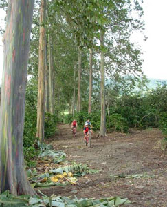 Biking in Costa Rica's Tropical Agricultural Research and Higher Education Center - photos courtesy of Adventure Life