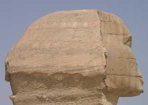 Nose for Trouble – the Sphinx