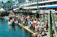 Cheering crowd greets the boat at the dock in Boothbay Harbor.