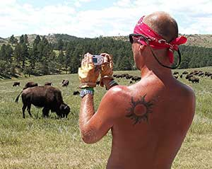 One big attraction of the Sturgis Bike Week is the scenery, and the wildlife. Photo by David Rich