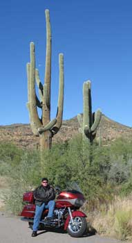 Dan is shown with a seguaro cactus.