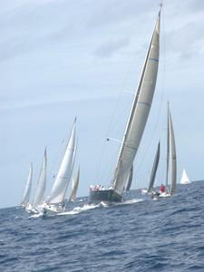 Antigua Race Week