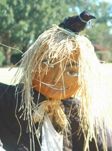 Scarecrows in the Garden happens every October at the Atlanta Botanical Gardens.