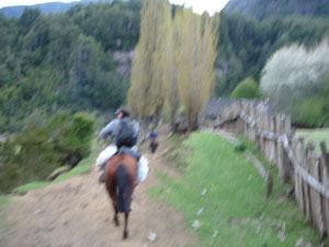 Off at a gallop
