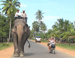 Touring by motorbike in Cambodia: Seeing the country just like a local!