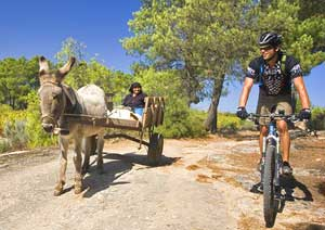 Passing a donkey cart on the road to Linhares - photos by Matthew Kadey