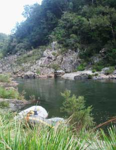The Nymboida River