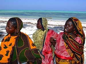 Women gathering seaweed in Jambiani