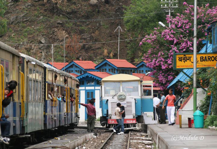 The Barog Station gets busy. Photos by Mridula Dwivedi.