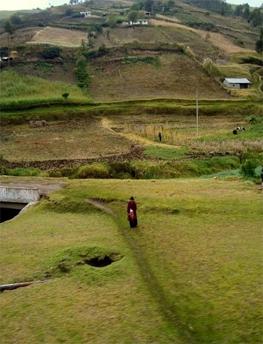 Ecuador hillside