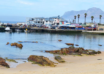 The Train pulls off from Kalk Bay harbour with its fishing boats and seaside restaurant?s.
