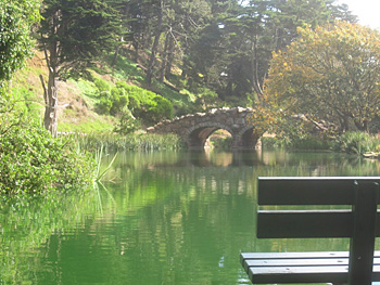 Golden Gate Park provides plenty of places to find peace.
