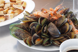 First course on Darryl's dinner cruise are giant prawn and green lipped New Zealand mussels.