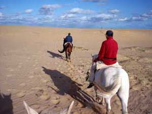 Horseback riding in South America