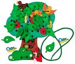The Moringa lacing tree