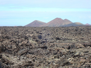 volcanic soil in the Canary Islands. photos by Tal Abbady.