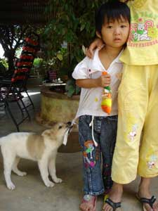 Kid and a dog in Vietnam.
