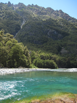 River in Patagonia full of trout.