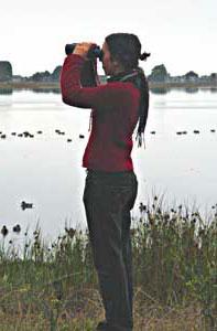 Claire Hutkins Seda Bird-watching Solo