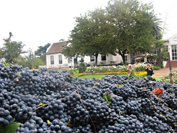 The tour includes a visit to South Africa's world famous wine country.