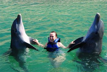Playful dolphins at Delfinus, near Cancun.
