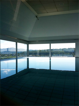Infinity pool at the Zurich Swisshotel.