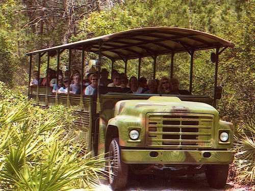 J.B. Starkey's takes tourists on a bus adventure in Florida. Photo courtesy of emklopp/Flickr.