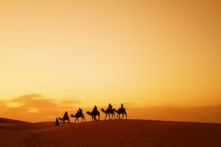 Camels are a frequent site atop these dunes of the Sahara.