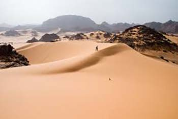 Cell Phones in the Sahara