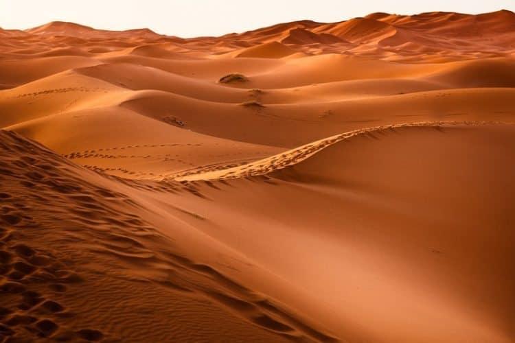 Western Sahara desert view.