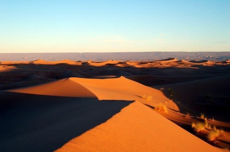 The mesmerizing, undulating waves of the Sahara desert.