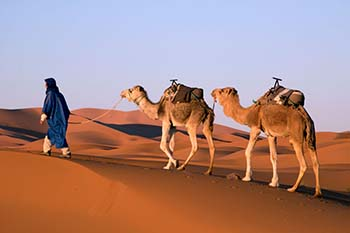 Rajasthan Romping:A Camel Safari in the Thar Desert