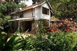 Miti Mingi Guesthouse in Nairobi on a rim overlooking Lake Manyara.