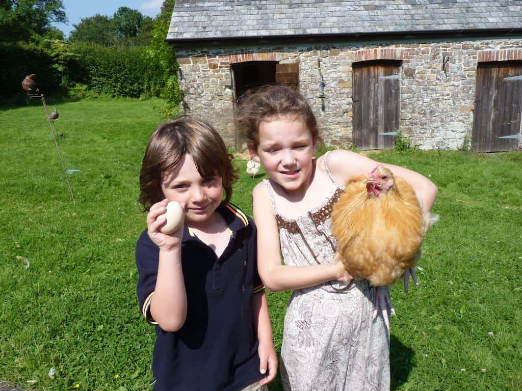 Kids love staying on farms, hunting for eggs and enjoying the nature.