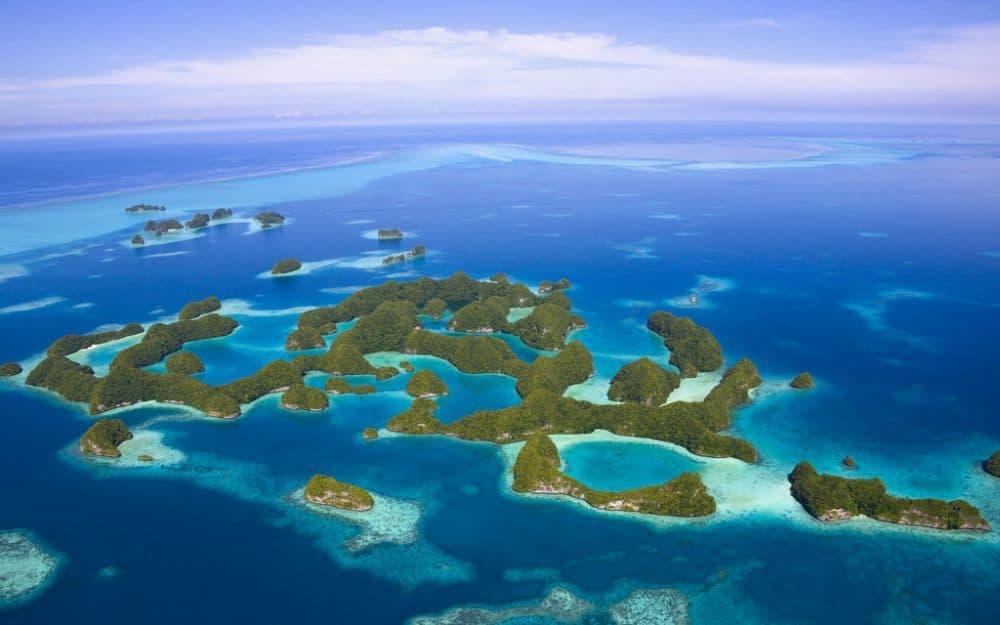 Palau, Micronesia: A World Underwater