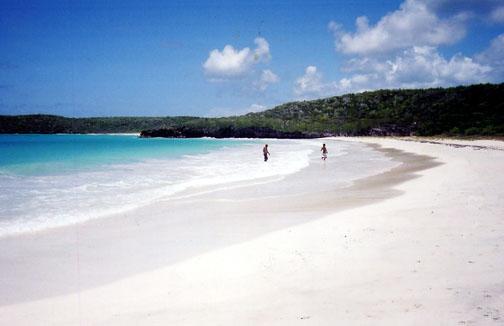 Corcho Beach in Vieques Island. Joel Rivera Nieves photo.