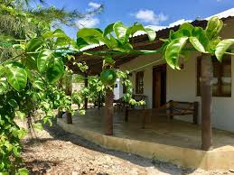 Swahili Divers Guest House. (Booking.com)