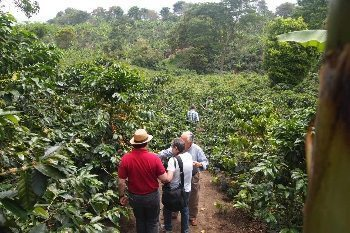 A tour of coffee country near Pereira, Colombia. Max Hartshorne photo.